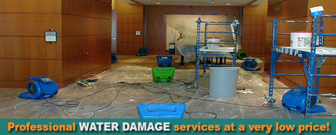 page-water-damage